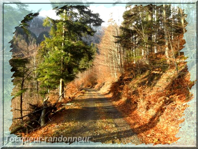 Cascade du Bruscher 19-d-cembre-2012le-braun-033-3a8bda9