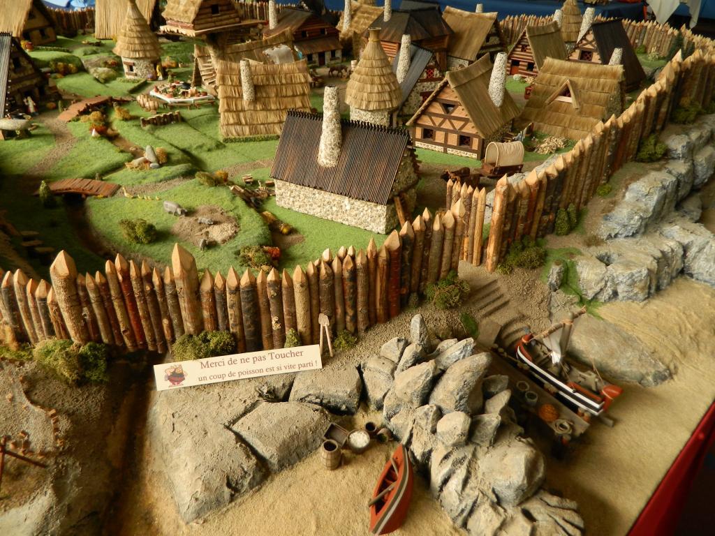 Le Village d'Astérix le Gaulois au 1/40  Dscn2965-3c06c9d
